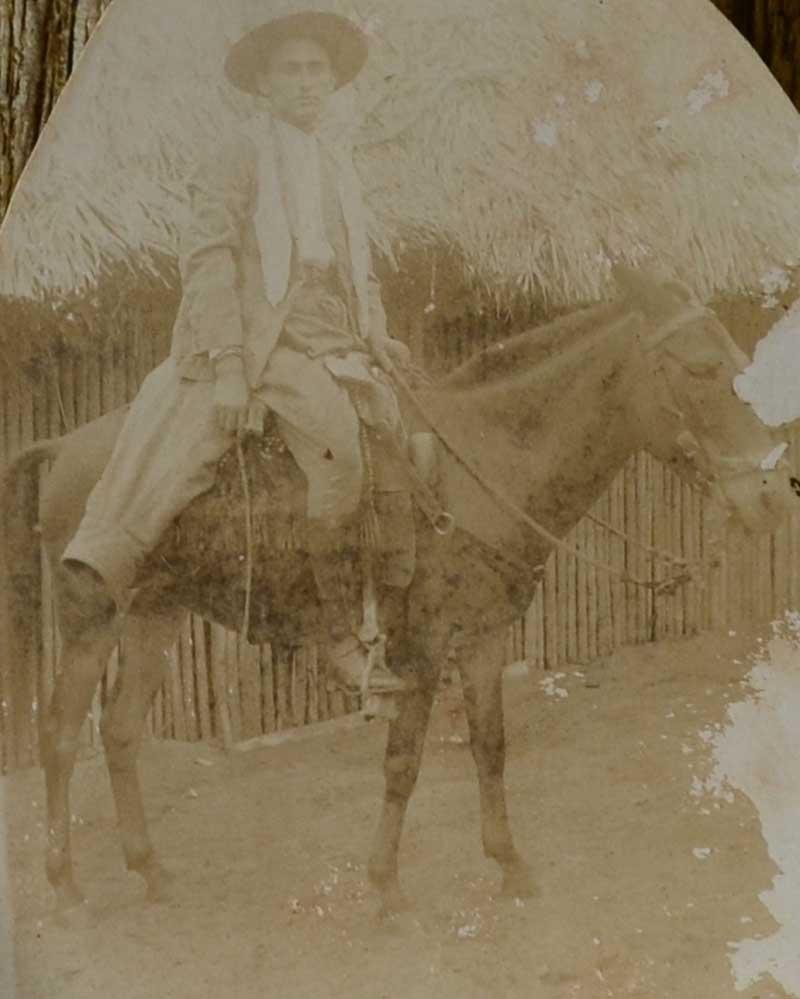 coronelcarrijo-cavalo
