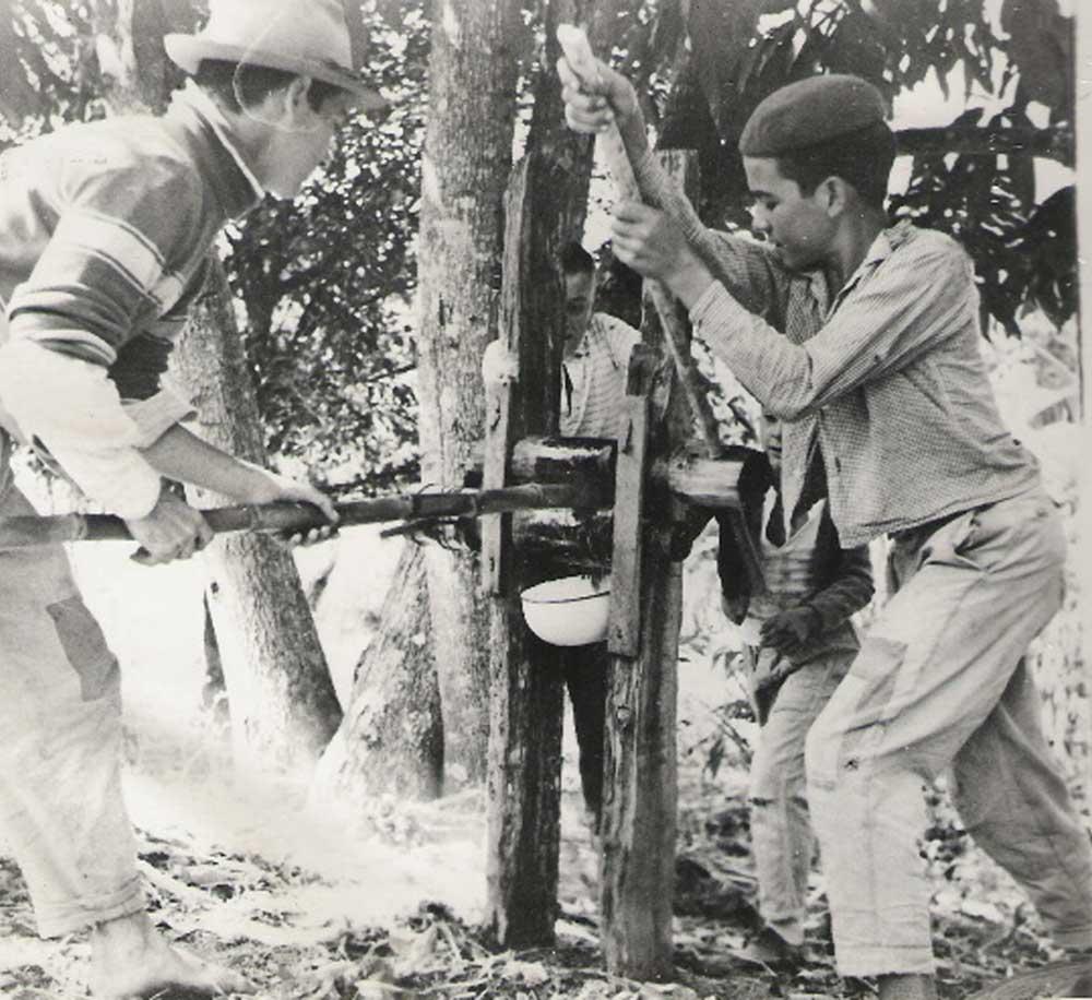 engenho-mineiros